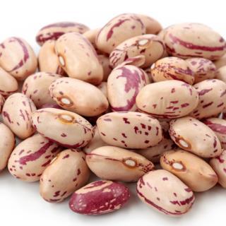 Buy Haricot bean