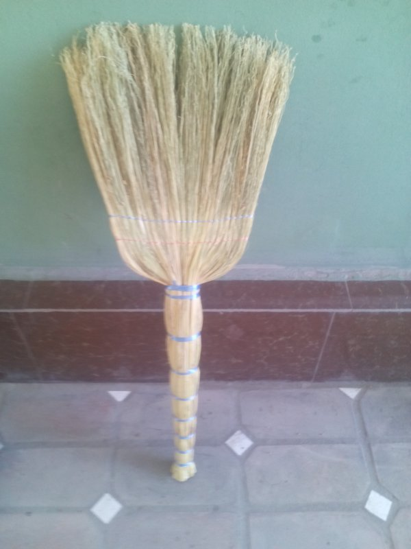 Sorghum brooms Economic 3rd proshivny