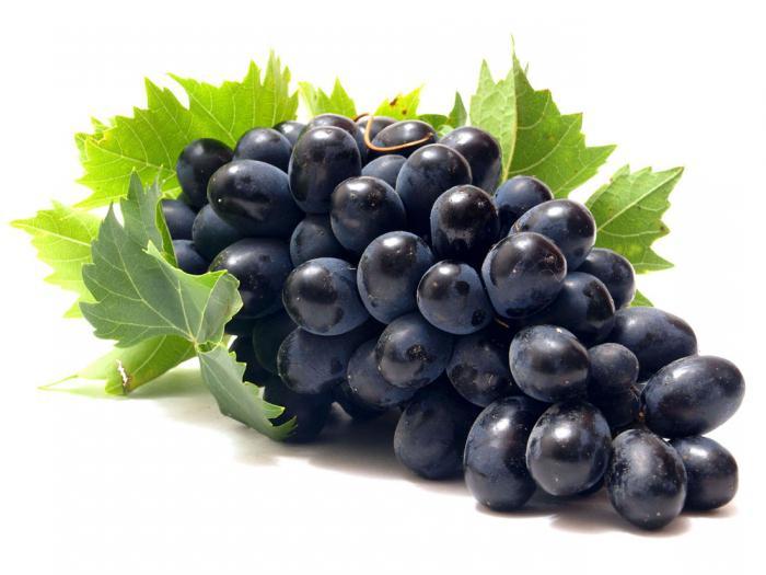 В Дагестане построят хранилище на 5 тысяч тонн винограда