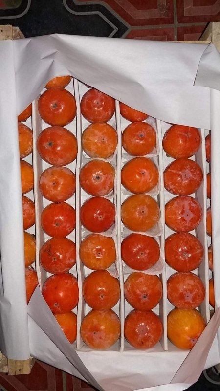 Купить Абрикос, черешня, слива, нектарин, персик, виноград, хурма
