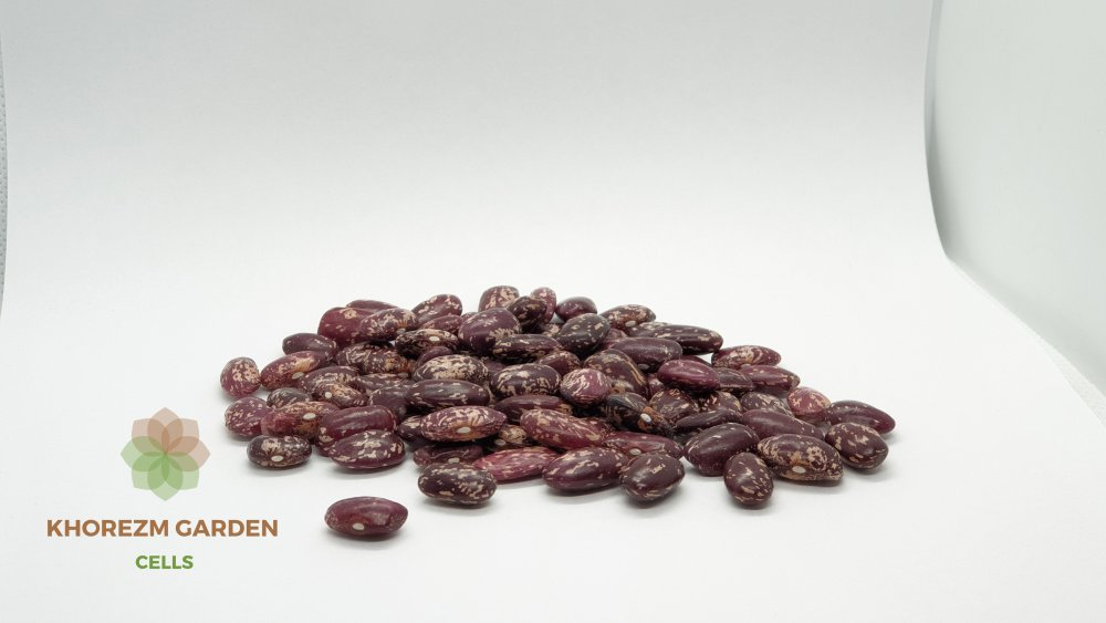 Buy Red beans