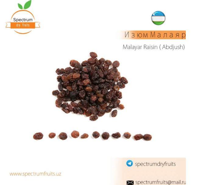 Купить Изюм Малаяр Spectrum Dry Fruits