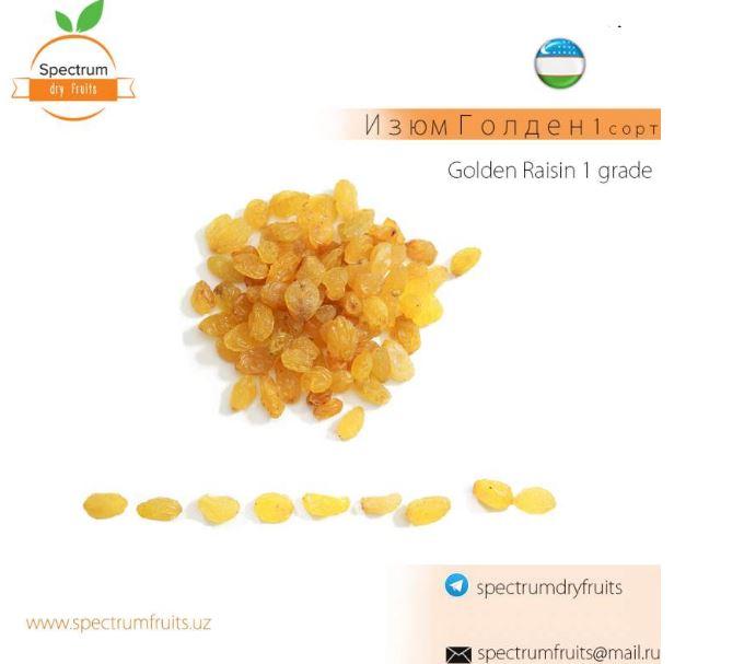 Купить Изюм Голден 1 сорт Spectrum Dry Fruits
