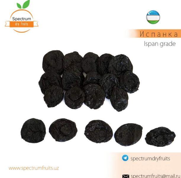 Купить Чернослив сорт Испанка Spectrum Dry Fruits