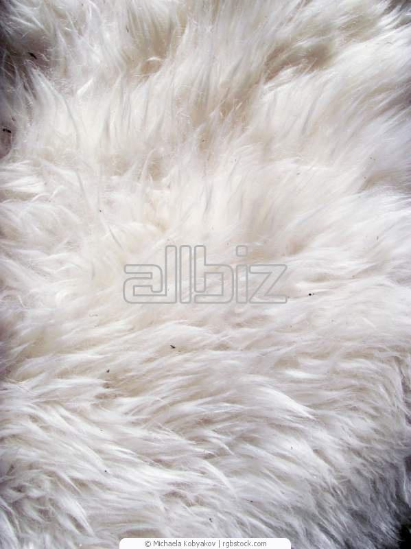 Купить Кожаное сырье Баранья кожа