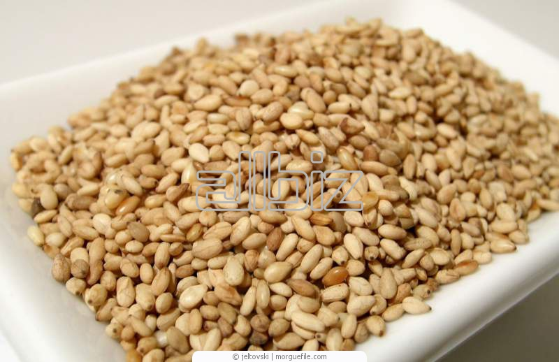 Buy Spices, seasonings, additives, other food. Spices and spices. Sesame