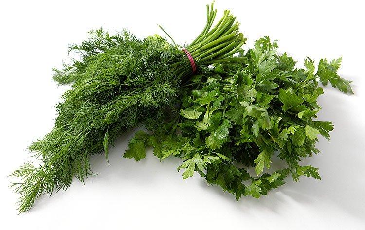 Купить Зелень свежая из Узбекистана