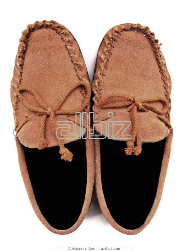 Buy Moccasins are female