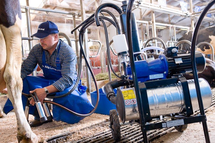 еще аппарат для дойных коров цена продаже бытовой техники