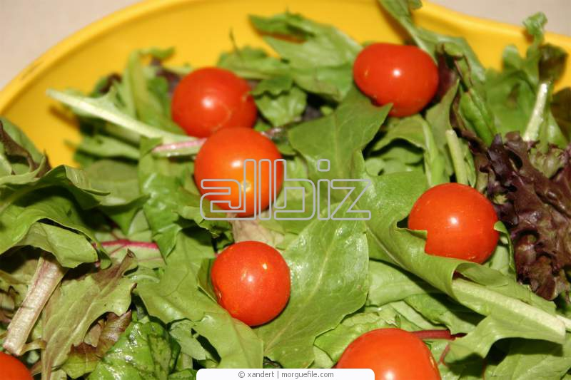 Купить Томаты консервированные, помидоры