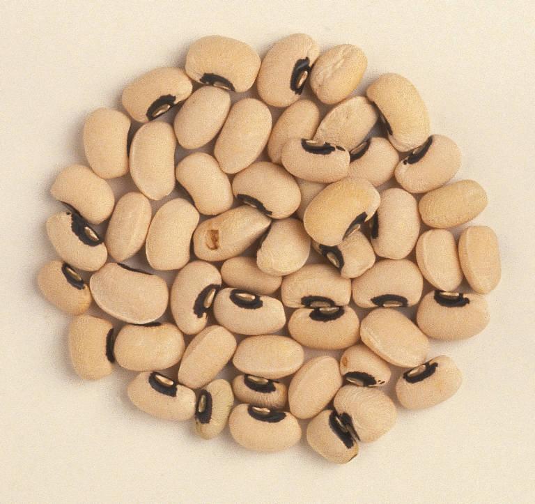 Buy White beans