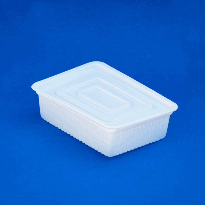 Buy Container of food 1000 ml
