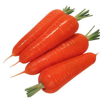 Купить Семена красной моркови Kuroda Chantenay