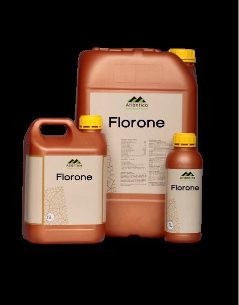 Флорон (Florone)