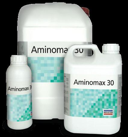 Аминомакс 30 (Aminomax 30)