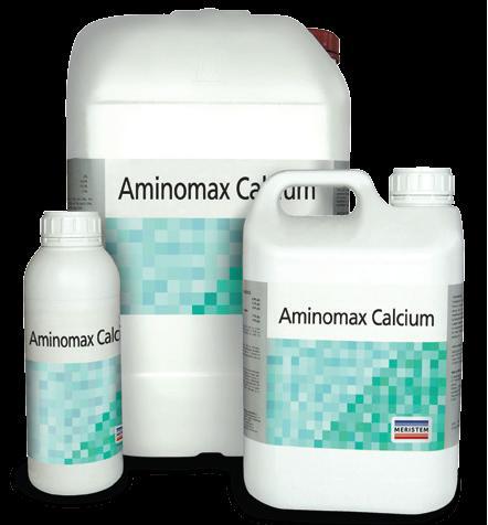Аминомакс Кальций (Aminomax Calcium)