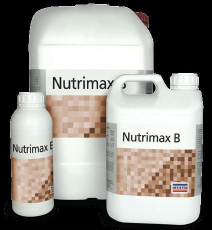 Нутримакс В (Nutrimax B)
