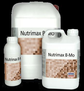 Нутримакс В-Мо (Nutrimax B-Mo)