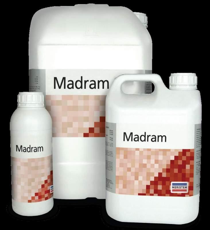 Мадрам (Madram)