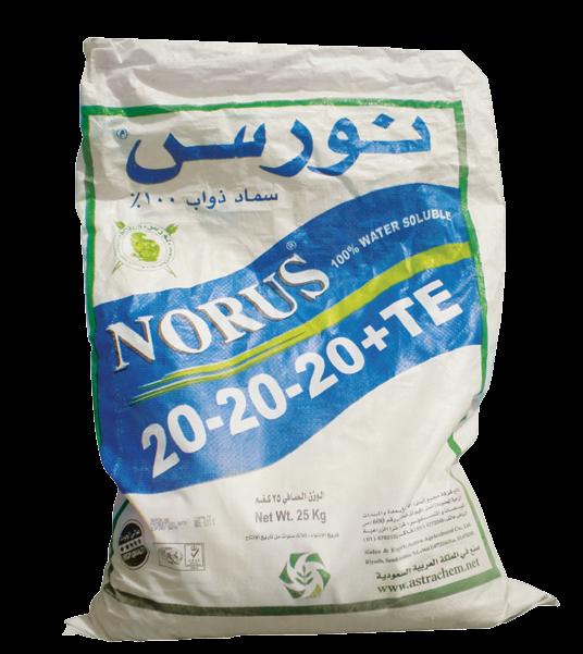 Удобрение Норус 20-20-20+МЭ