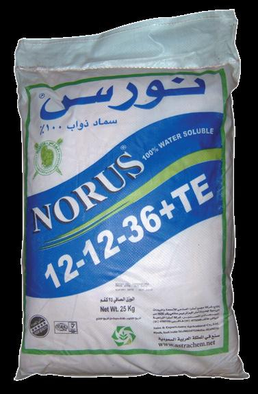 Удобрение Норус 12-12-36+МЭ
