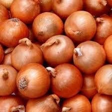 Buy Onions for expor