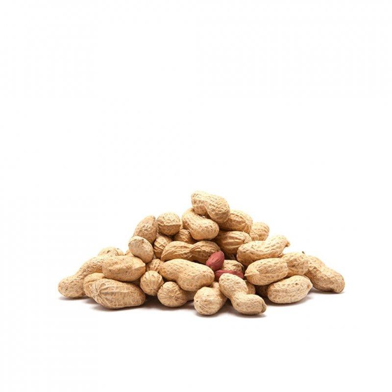 Buy Peanut in shell