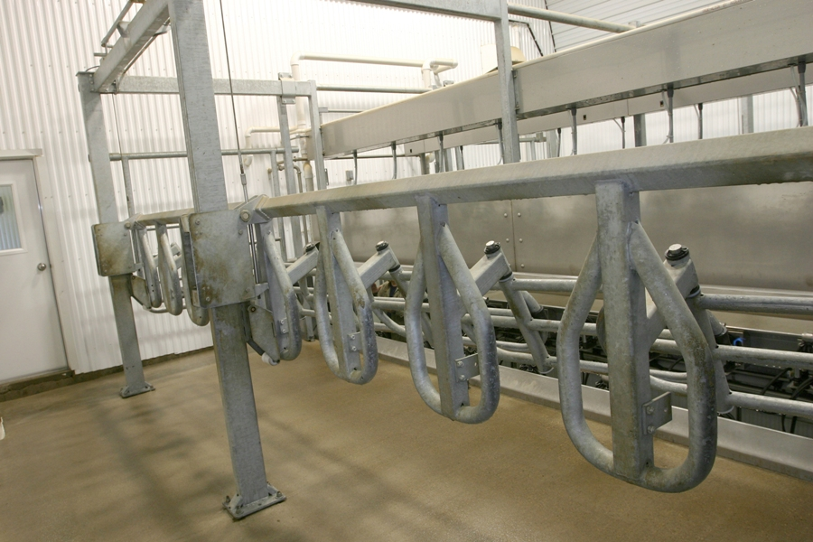 Buy Milking DeLaval Champion™ hall of parallel type
