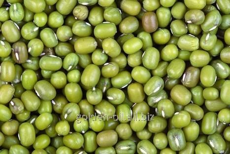 Buy Mash, peas, beans Masha