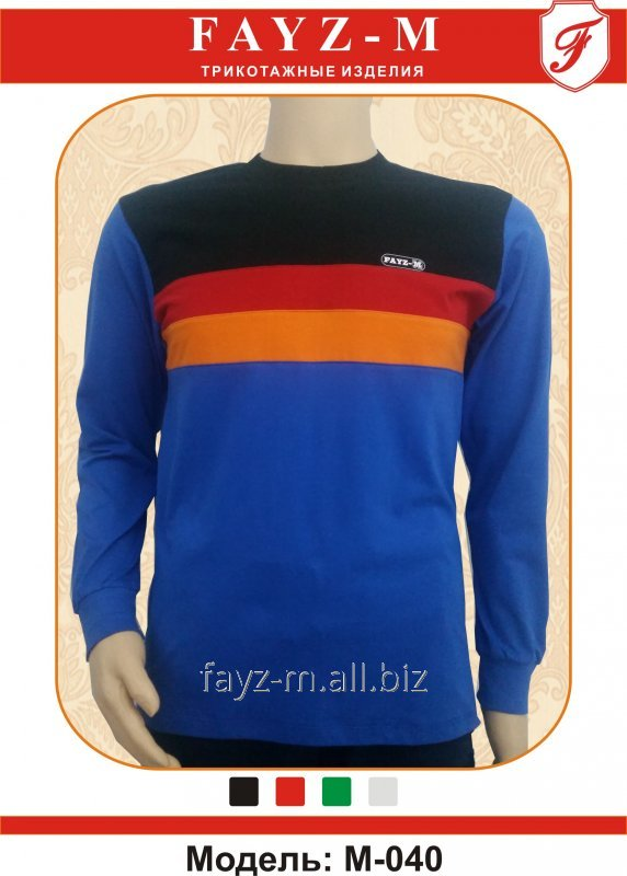 Buy T-shirt man's with long sleeves and wide strips in fron