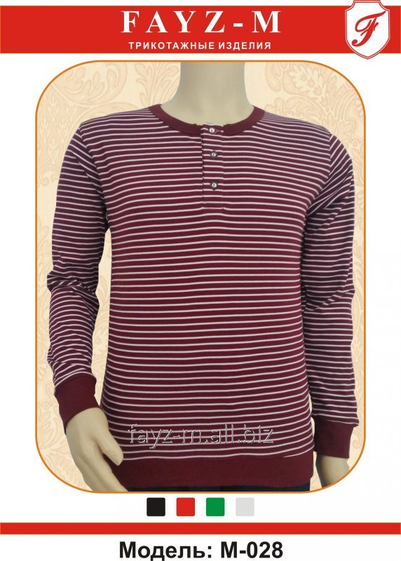 Buy T-shirt man's INTERLOK with long sleeves and strips on buttons without collar