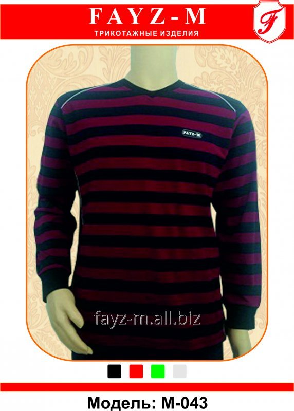 Buy T-shirt man's with long sleeves of V - figurative cut and wide color strips (knitted of color pryazh)