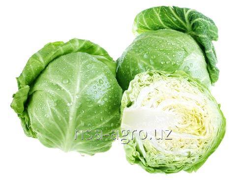 Почвенная подкормка капусты Kelik K
