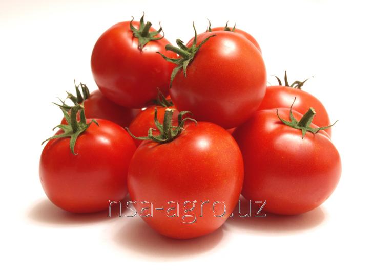 Корневая обработка помидор NPK 25-5-5 кг