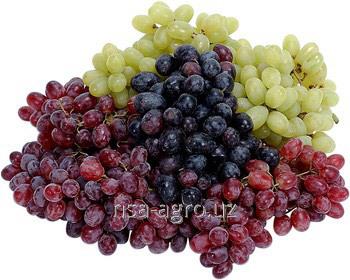 Минеральное удобрение для винограда Атланте Плюс