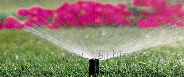 Buy Rain Bird of Spray the sprinkler which is jumping