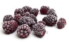Blackberry frozen