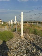 Ferro-concrete support