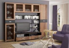 Мебель гостиная от BENEFIT FURNITURE GROUP 003