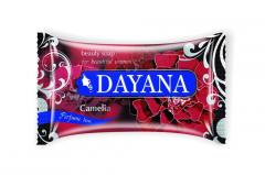 "Toilet SOAP firm ""DAYANA"""
