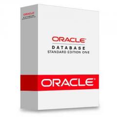 База данных Oracle Standard Edition One