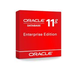 База данных Oracle Database Enterprise Edition 11g
