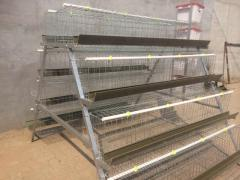 Cages for laying hens