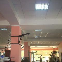 Потолок гипсовый Армстронг однотонный, для спортивного зала