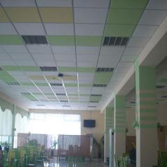 Потолок гипсовый Армстронг разноцветный