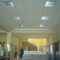 Ceiling suspensions