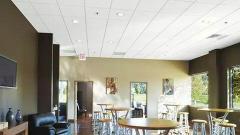 Потолок гипсовый Армстронг для дома