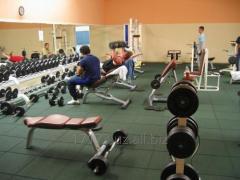Rezinoviya a tile for the gym, pass soccer