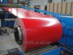 Polymeric Sheets (Roll) China