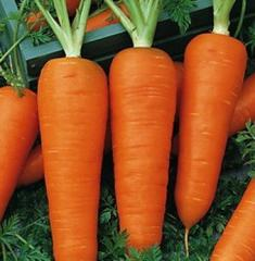 Морковь красная мытая